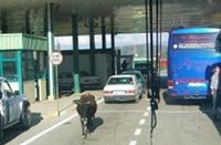 pamje nga kufiri