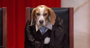 Gjyqtar Larua