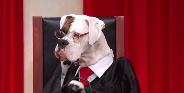 Gjyqtar Balua
